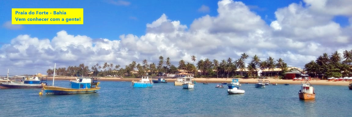 Banner-Praia-do-Forte1150